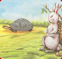 tortoise passing by the sleeping hare